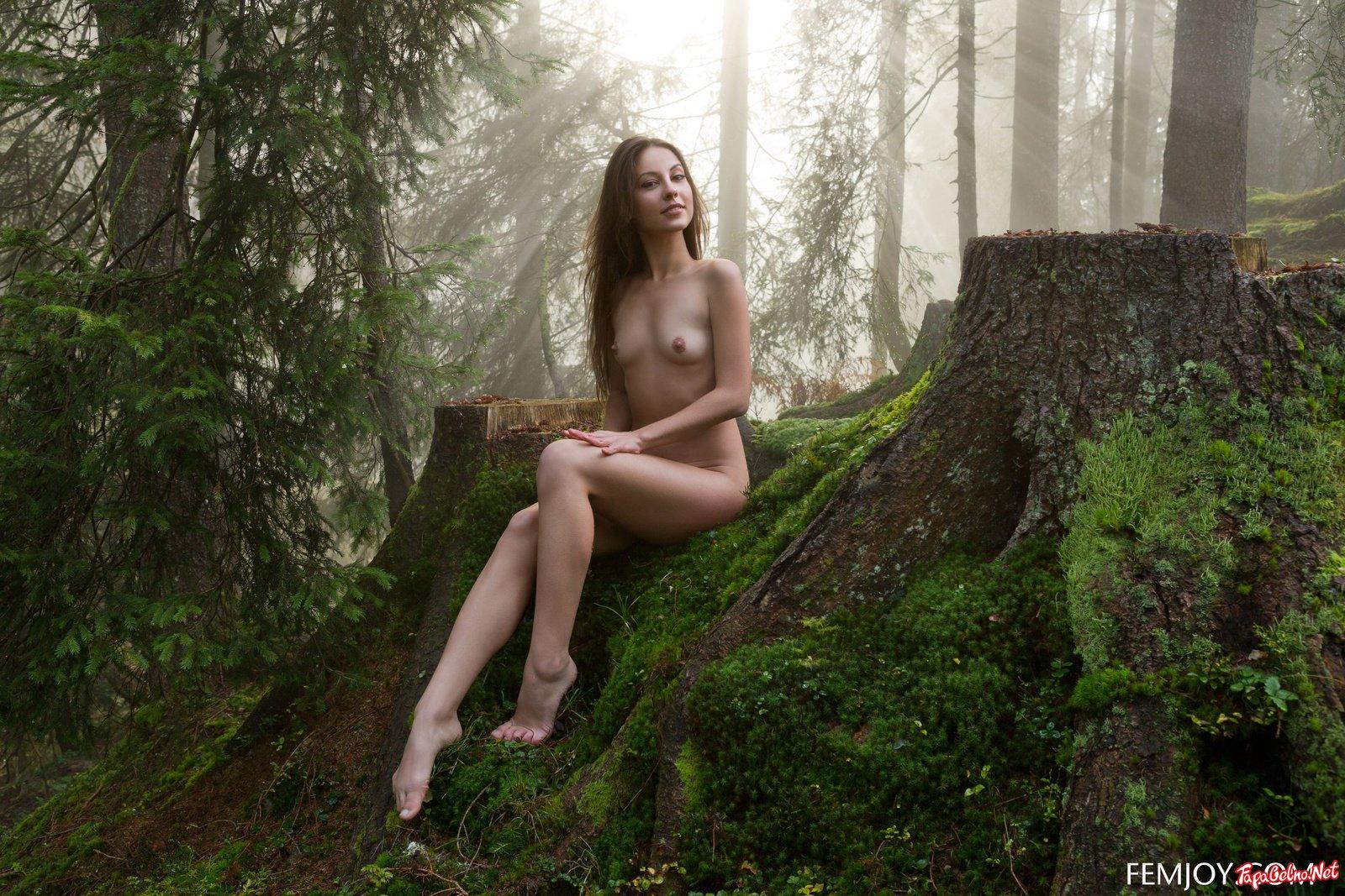 Обнаженные Женщины В Лесу